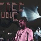freewave.jpg